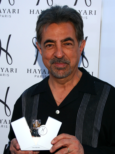 Joe Mantegna Hayari
